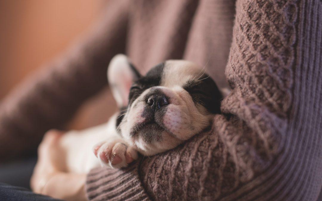 11 Tips to a Good Night´s Sleep