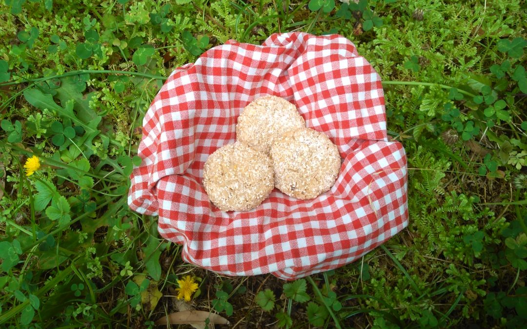 Rice Bread Bites for Your Picnic