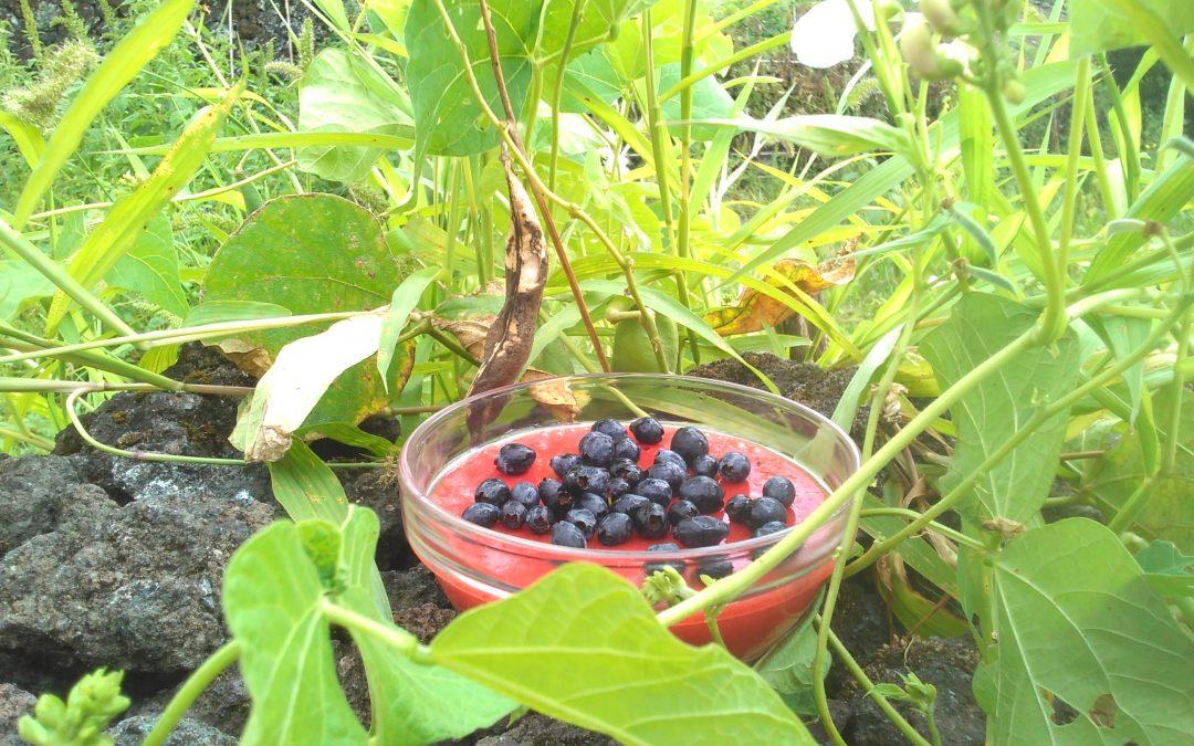 Strawberry Gelatin with Blueberries