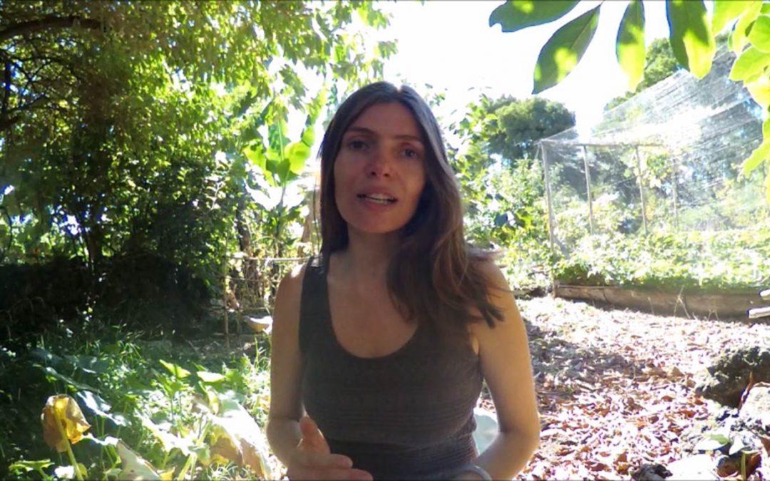 3 Minutes with Natacha – Episode 3: Emotional Eating