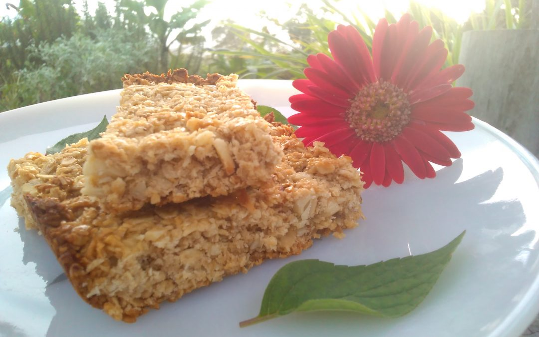 Recipe for a Healthy Snack: Energy Bars