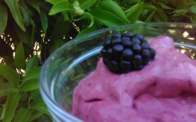 Delicious Antioxidant Ice Cream